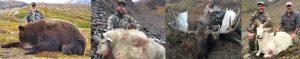 Alaska Summit Guide service hunts